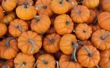 Passages Malibu, fall, recipes