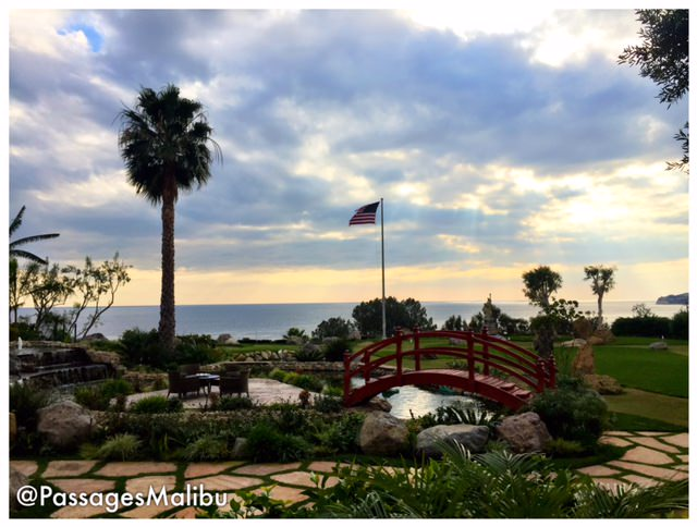 Innovative and different forms of therapy in addiction for Passages malibu