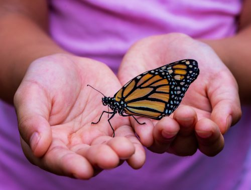 How Can Spirituality Help Overcome Addiction?